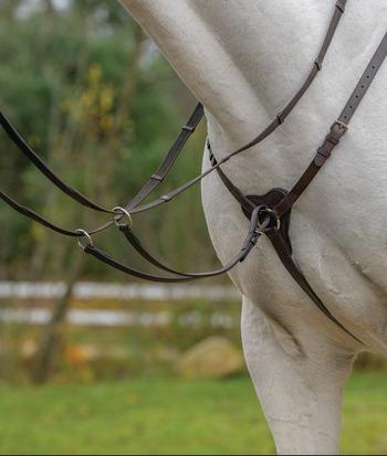 Shires Avignon Three Point Breastplate