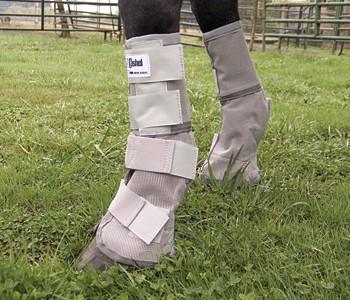 Crusader Leg Guards, Fly Protection - Warmblood Tack Store