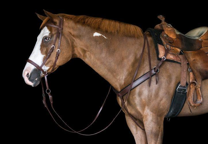 Draft Horse Western Breast Collar - Beta with Plush Felt Lining