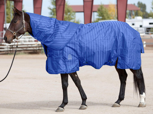 EOUS Phlegon Light Weight Turnout, Turnouts - Warmblood Tack Store