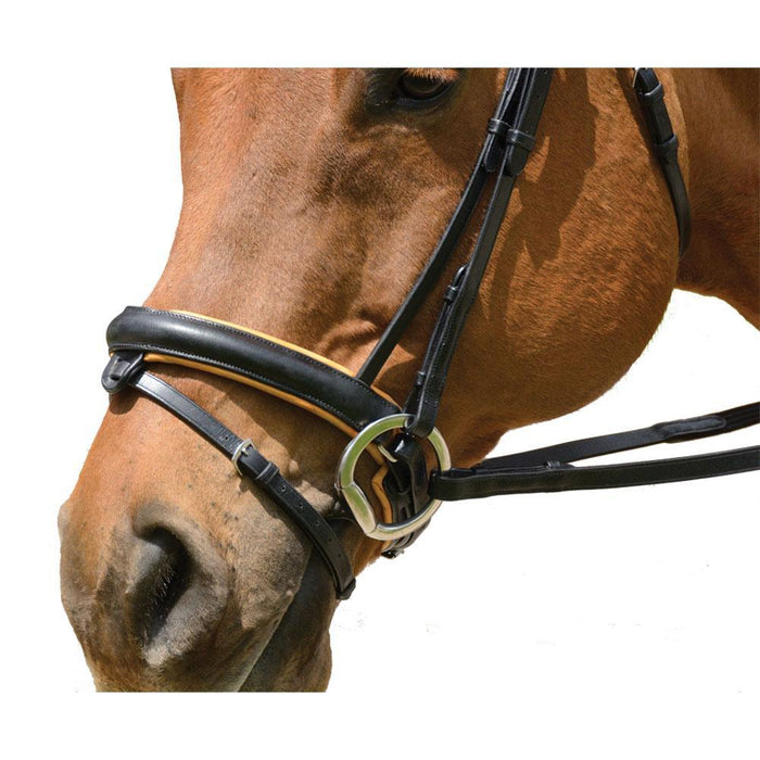 Exselle Elite Plain Raised Padded Contrast Bridle with 2 Browbands