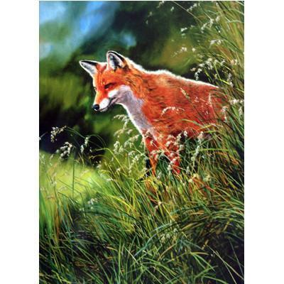 Fox in the Grass - Greeting Card, Greeting Card - Warmblood Tack Store