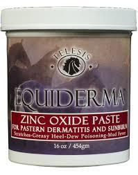 Equiderma Zinc Oxide Paste for Scratches