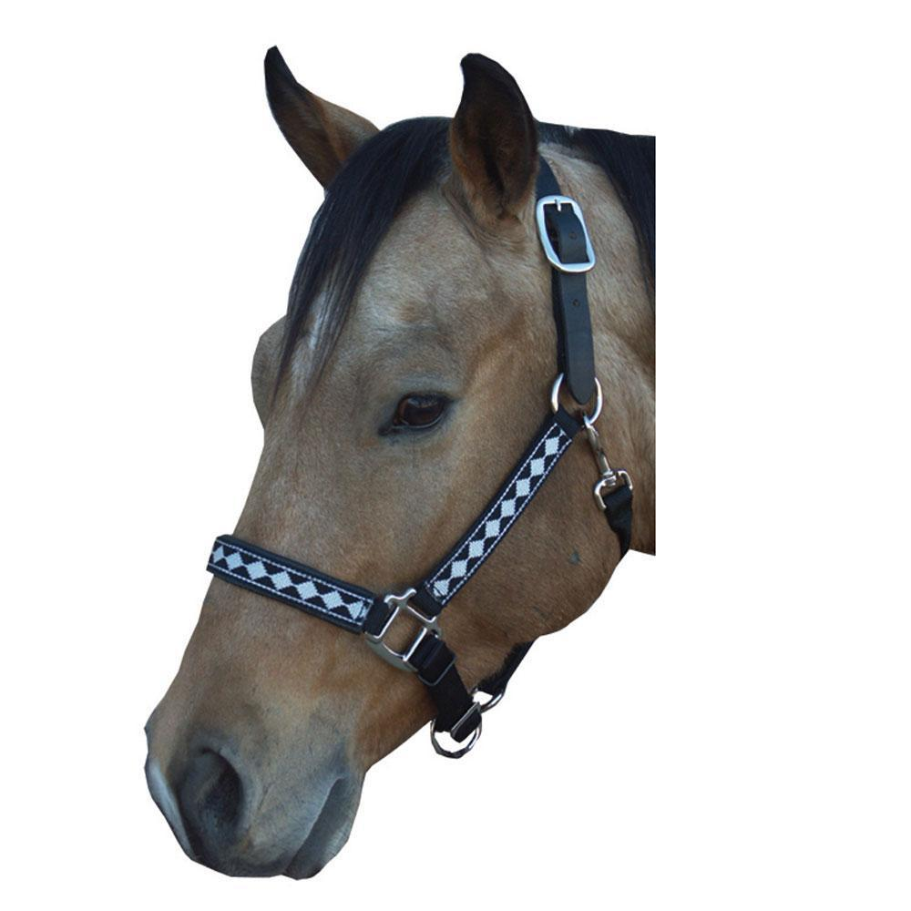 Diamond Warmblood Horse Halter with Matching Lead