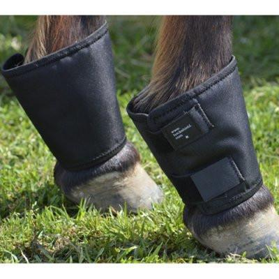 Fetlock Shield, Leg Protection - Warmblood Tack Store