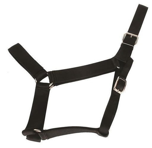 Heavy Duty Draft Horse Halter, Halter - Warmblood Tack Store