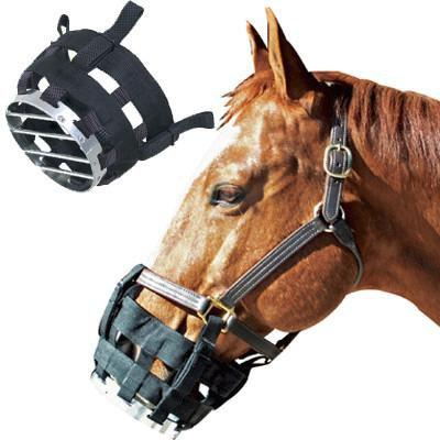 Best Friend® Clip On Cribbing Muzzle, Horse Muzzle - Warmblood Tack Store
