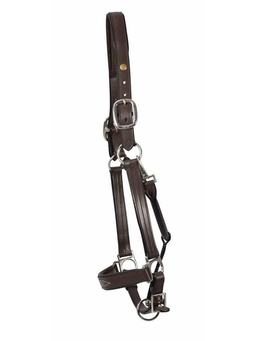 Warmblood Triple-Stitched Pro Fancy Leather Padded Halter