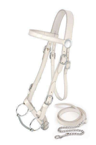 King Series - Draft Show Bridle, Bridle - Warmblood Tack Store