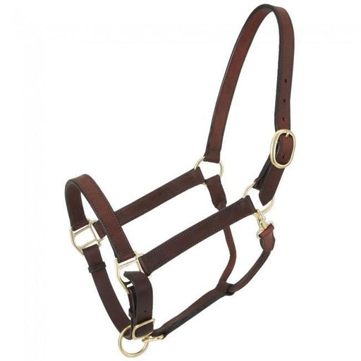 Churchill Stable Halter with Snap, Halter - Warmblood Tack Store