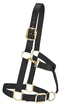 Nylon Draft Halter - 1 1/2""