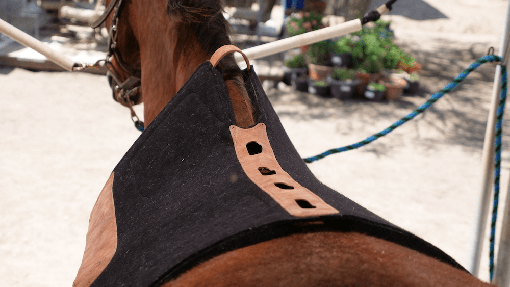 Total Saddle Fit PERFECT Western Saddle Pad