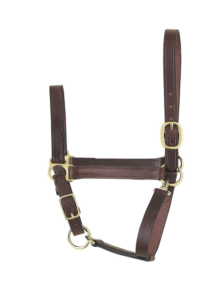 Economy Leather Halter - CLEARANCE, Halter - Warmblood Tack Store