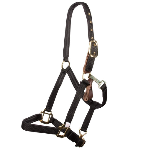 Dura-Tech Deluxe Padded Safety Turnout Halter - Warmblood Size, Halter - Warmblood Tack Store