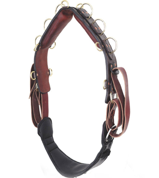 Premier Fits All Surcingle, Surcingle - Warmblood Tack Store