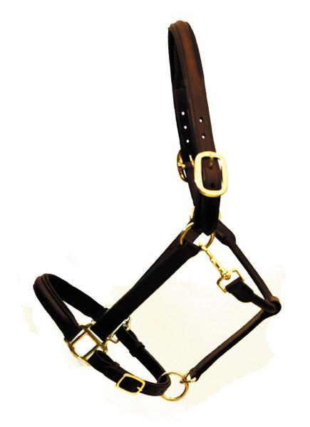 Eco Padded Leather Halter - Warmblood or Draft, Halter - Warmblood Tack Store