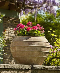 Campania International Thea Planter