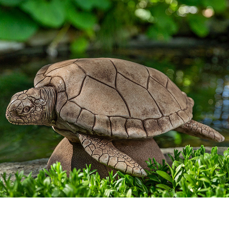 Campania International Large Sea Turtle