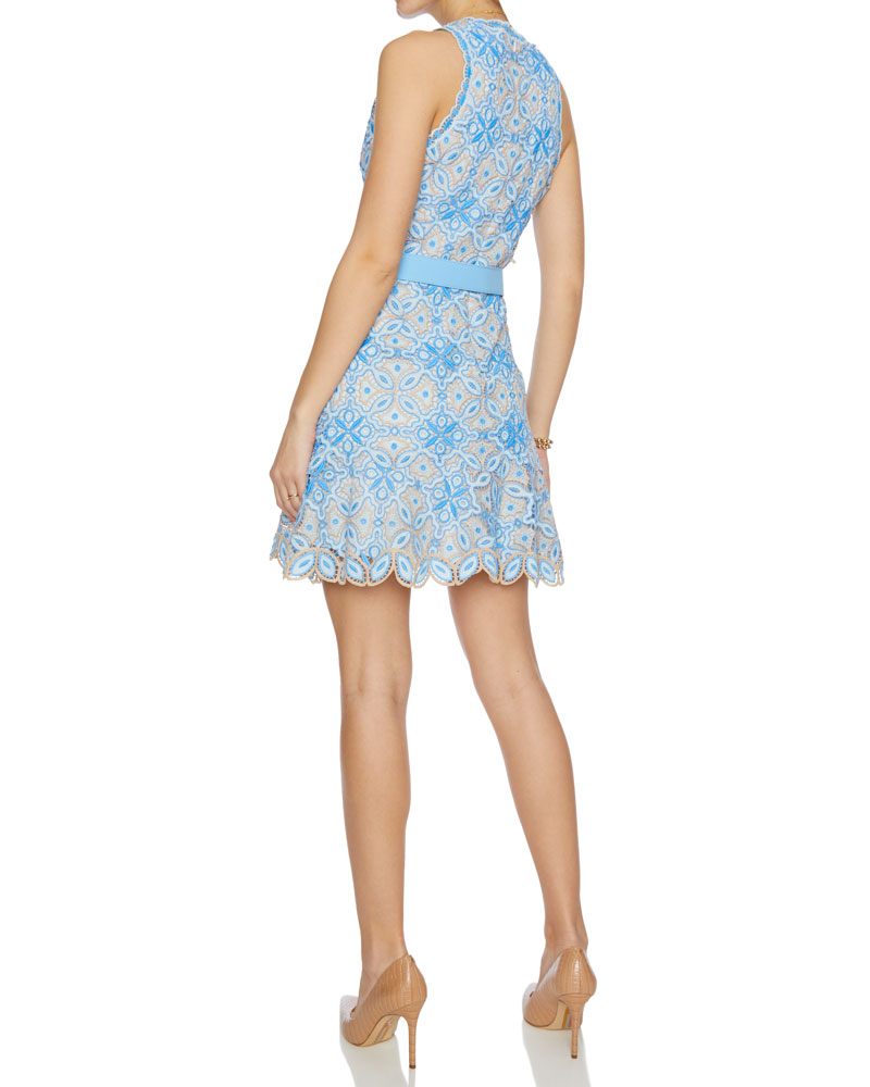Charlotte Guipure Lace Mini Dress
