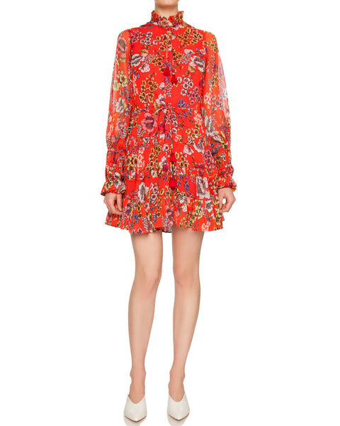 Jaila Floral Print Ruffled Mini Dress