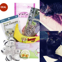 THE BEAUTY GODS DESIGNER PET SUBSCRIPTIONS