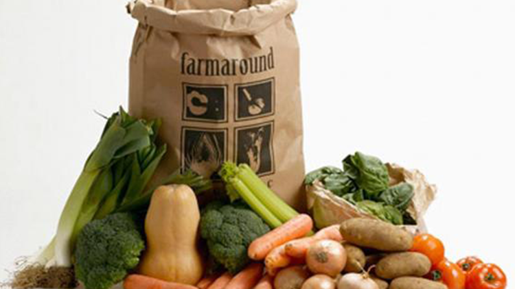Organic Standard Vegetable Bag