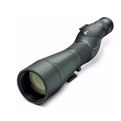 Swarovski STS 20-60x80 HD Spotting Scope (Straight Eyepiece)