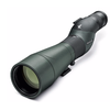Swarovski STS 25-50x65 HD Spotting Scope (Straight Eyepiece)