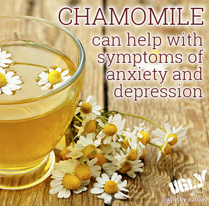 Chamomile can help relieve symptoms of anxiety and depression