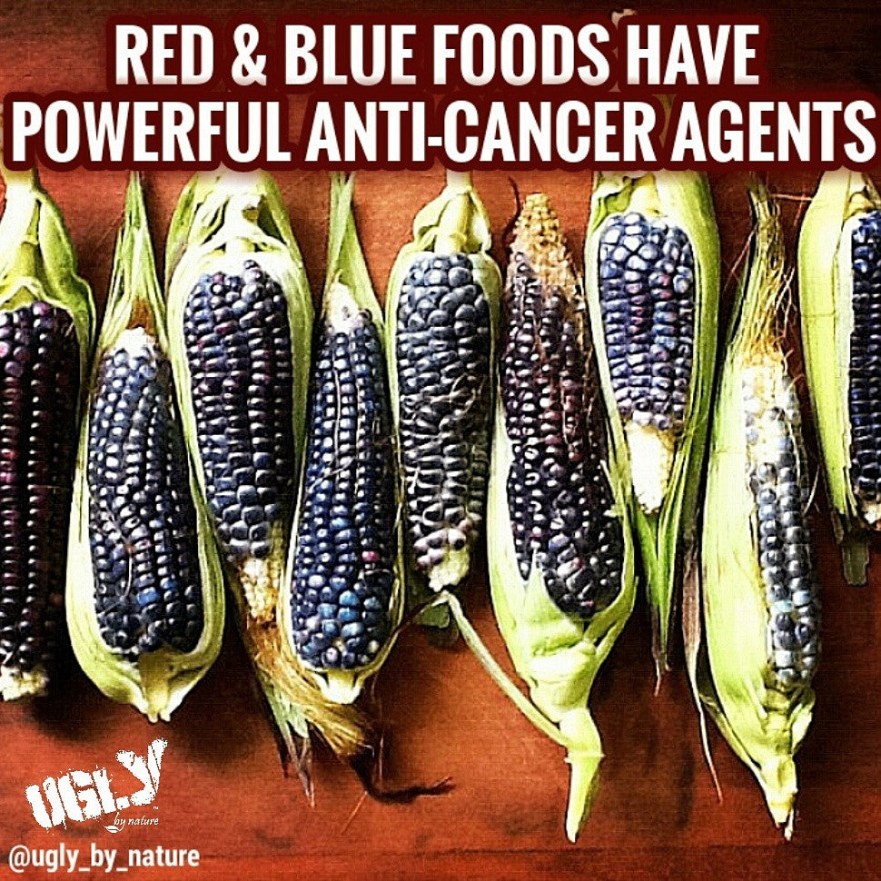 Which red and blue foods have anti-cancer agents