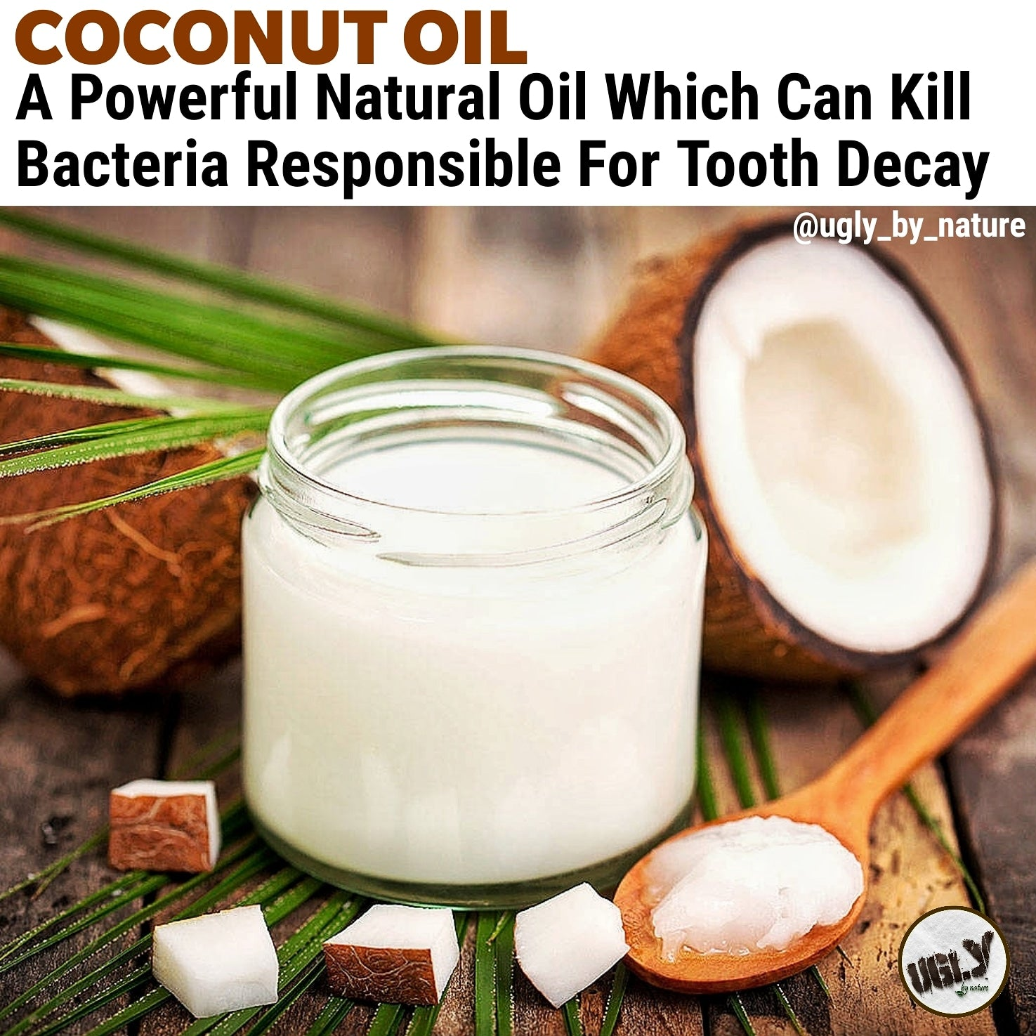 Coconut Oil Kills Bacteria Responsible For Tooth Decay