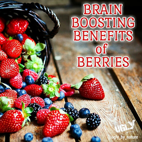 Berries benefits the brain