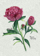Peony Give a Fig Card