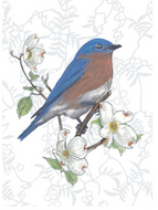 Bluebird and Dogwood Card - Give a Fig