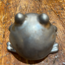 Tea Pet Frog (Eastern Elm)