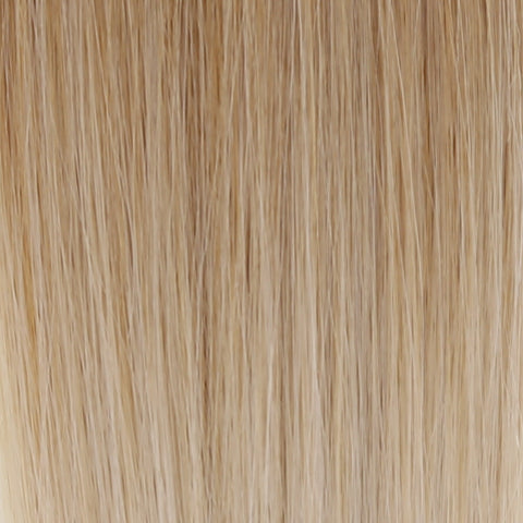 Ombre - Ash Brown (#9) to White Blonde (#60B) 22