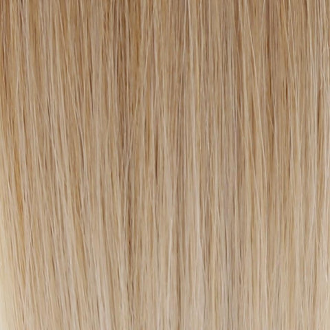 Ombre - Ash Brown (#9) to White Blonde (#60B) 18