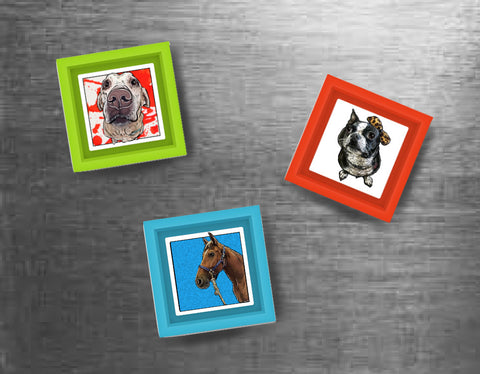 Custom Pet Magnets