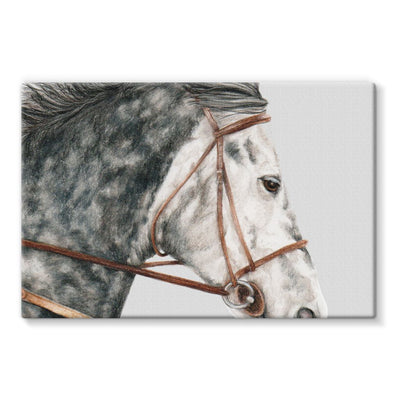 pony Stretched Eco-Canvas