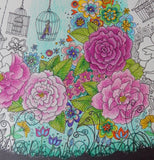 17 - COLOUR YOUR OWN Floral with Birdcages