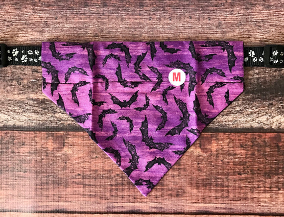 Purple Bats collar Bandana