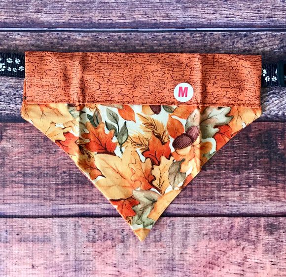 Autumn Leaves collar Bandana