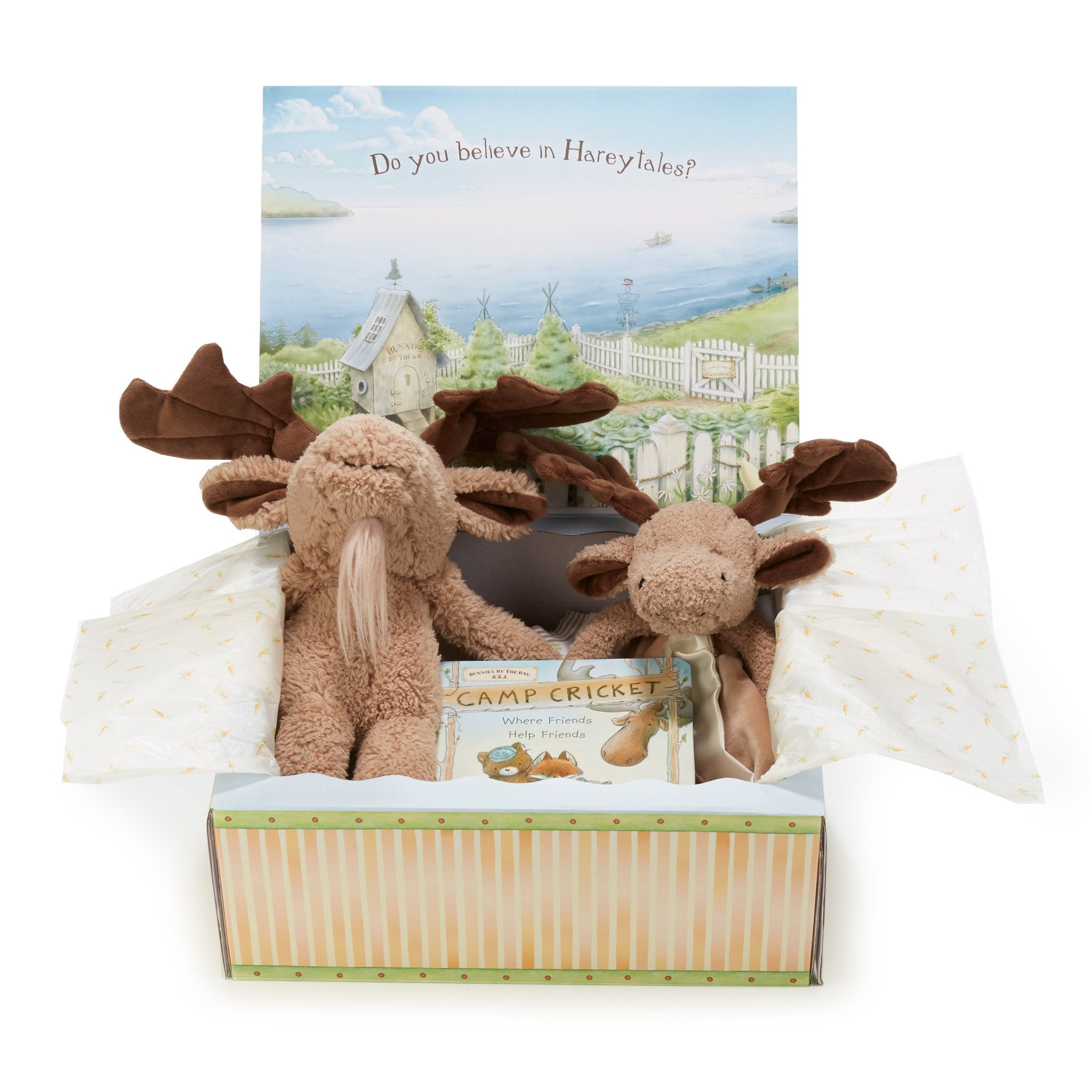 Bruce The Moose Christmas Adventures Gift Set