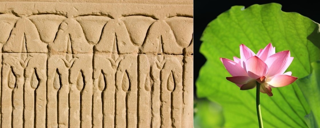 Meaning of The Lotus Flower in Ancient Egypt