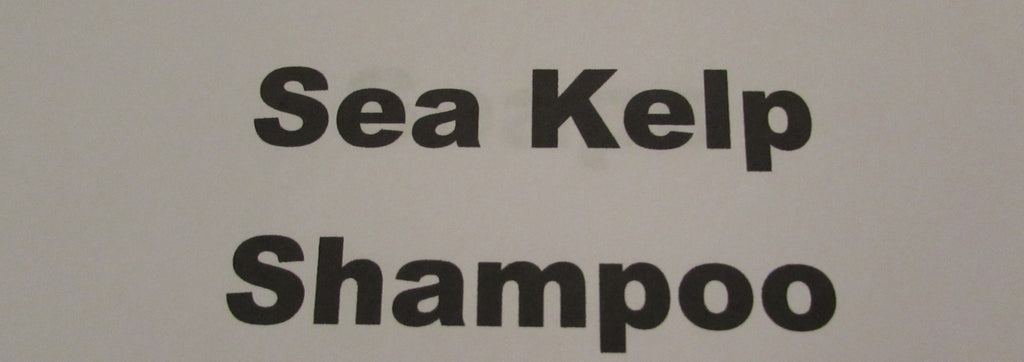 Sea Kelp Shampoo