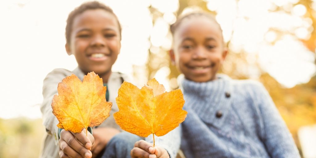 Seasonal STEM Challenges for Fall