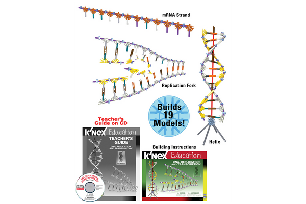 K'NEX DNA, Replication, and Transcription Set-PCS edventures.com