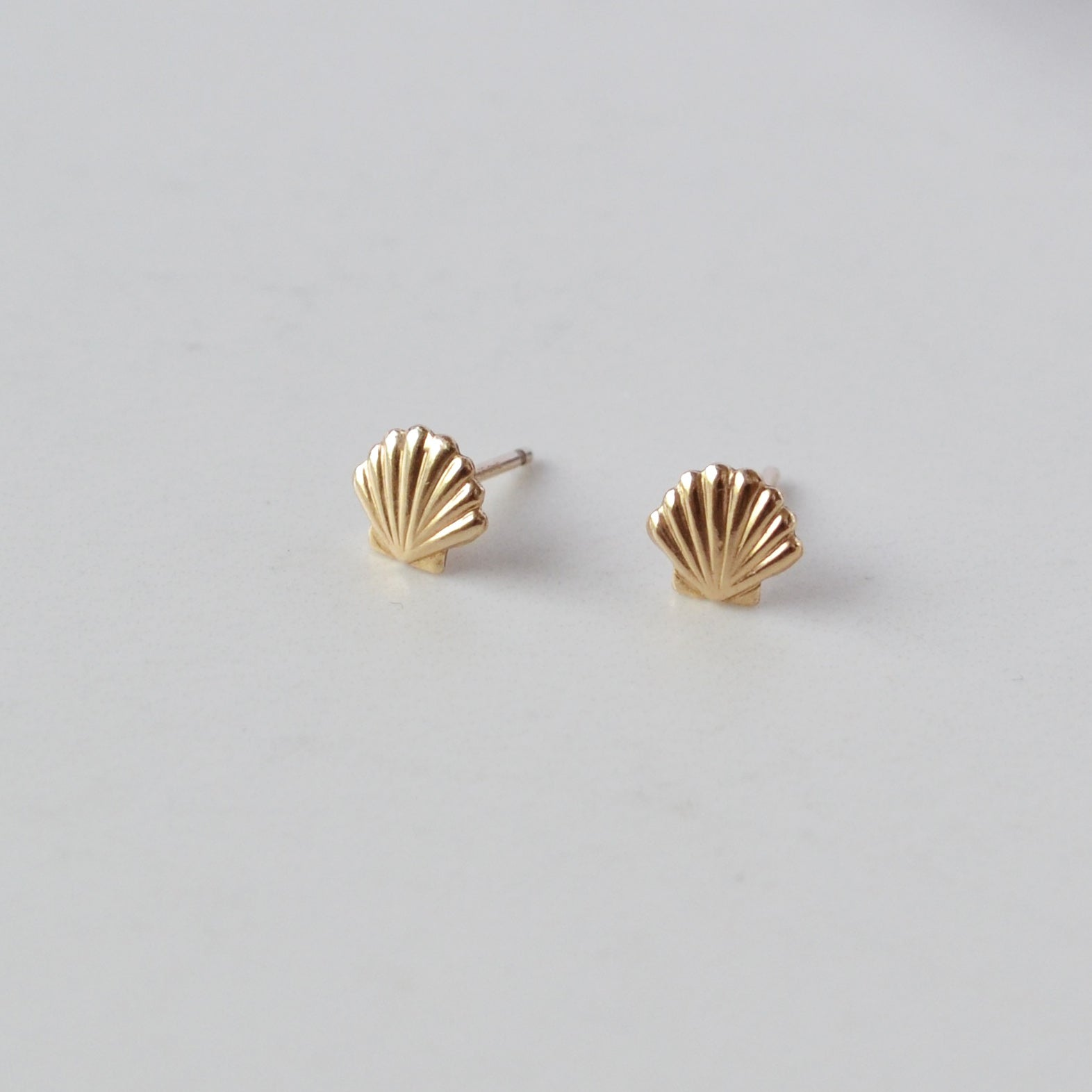 Seashell Stud Earrings