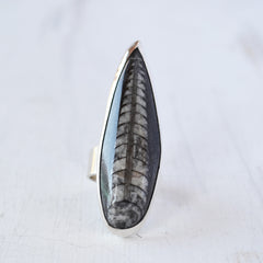 Orthoceras Dagger Ring
