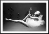 Marc-Lamey-Song-of-the-Nile-NiQOO-frame